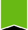 Lizza-flag